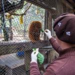 Zoológico Municipal de Canoas reforça cuidados no inverno