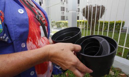Prefeitura da Capital intensifica o combate ao mosquito Aedes aegypti