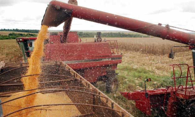 Agronegócio registra queda de 28% nas exportações em fevereiro